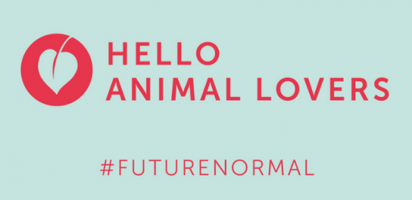 Hello Animal Lover text