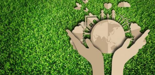 Cardboard hands holding earth