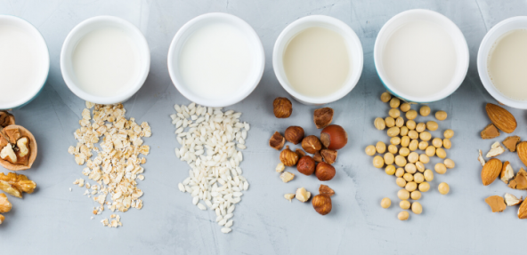 different types of dairy free milk