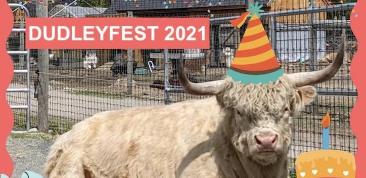 DudleyFest 2021 Banner Image
