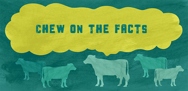 Chew the facts: find out more about the facts behind Plate Up for the Planet