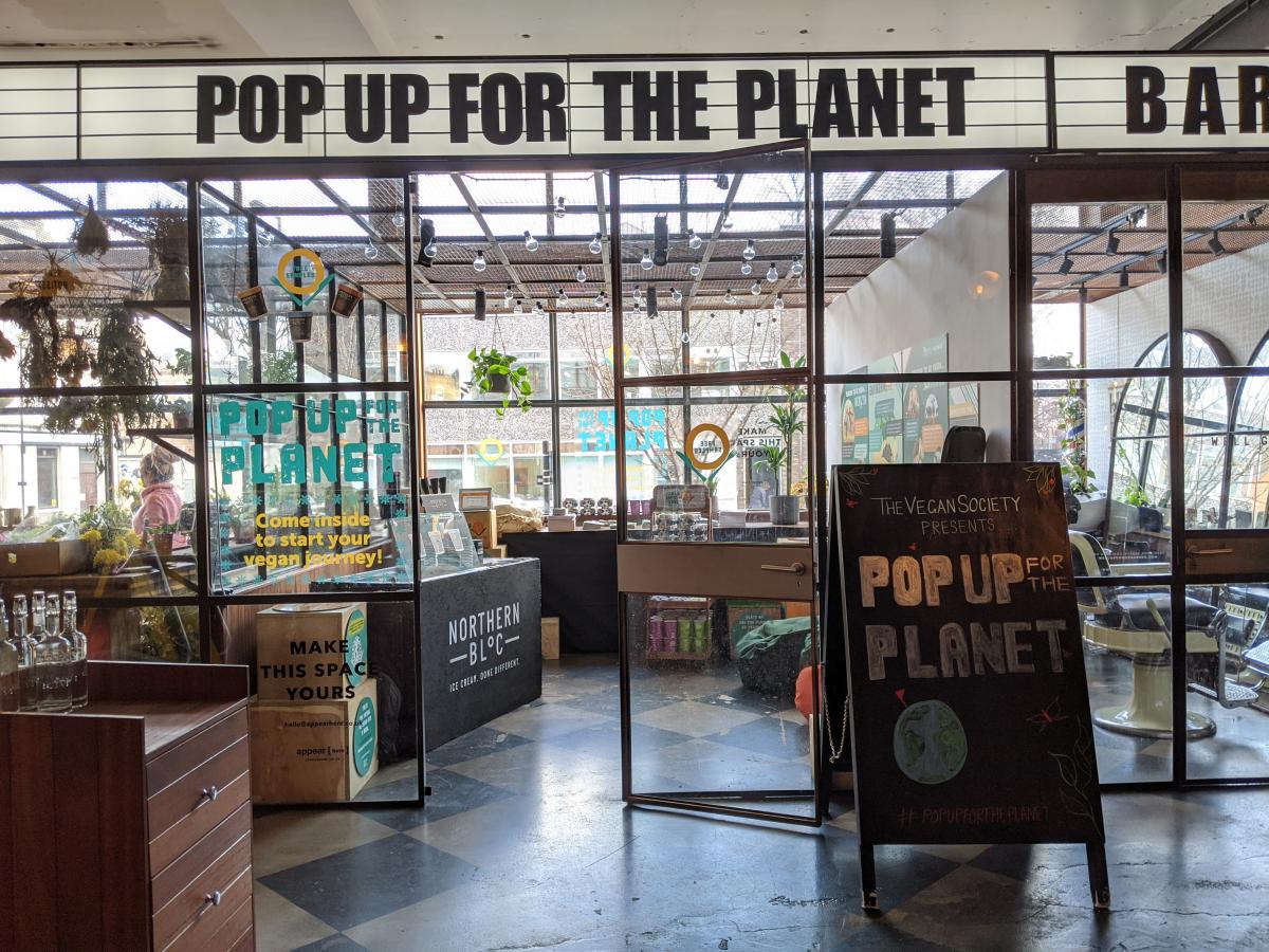 Pop Up For The Planet Shop Layout