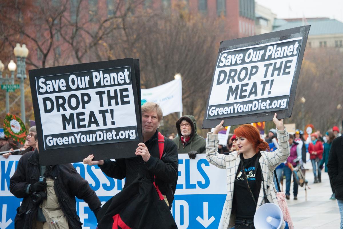 Enviromental vegan protesters