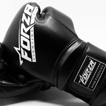 Forza fighting gear boxing gloves