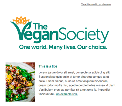 Vegan websites usa